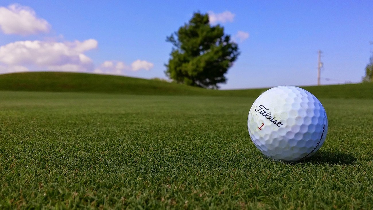 Picture of a Titleist Golf Ball.